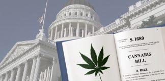 congress cannabis Marijuana legalization bill HR 420
