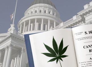 congress cannabis Marijuana legalization bill HR 420