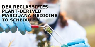 DEA-Reclassifies-Plant-Derived-Marijuana-Medicine-To-Schedule-V