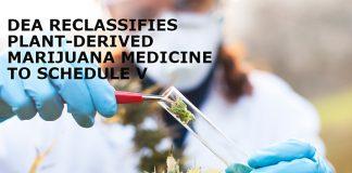 DEA-Reclassifies-Plant-Derived-Marijuana-Medicine-To-Schedule-V