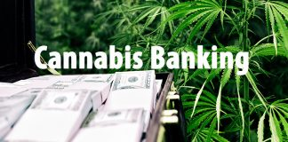 cannabis banking IRS cash federal cannabis banking law and traditional banking access. Cannabis business banking
