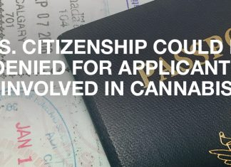 U.S. Citizenship Could Be Denied For Applicants Involved In Cannabis
